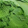 Mel's Top 10 Low-Calorie Ice Creams