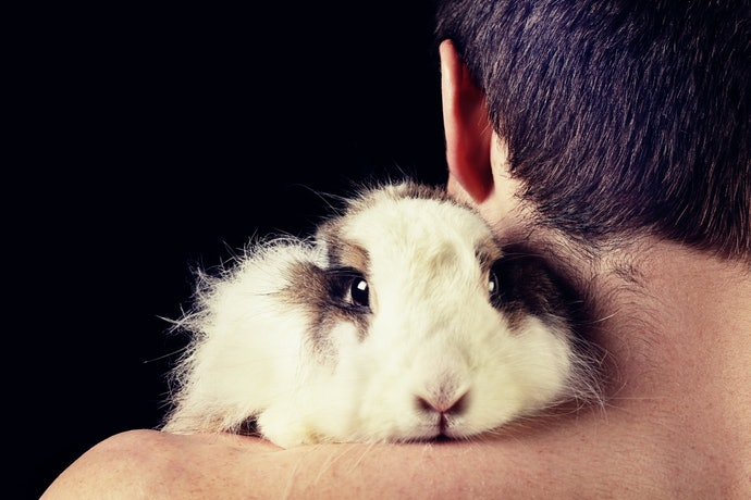 A Cruelty-Free Label Means You Can Shower with a Clear Conscience