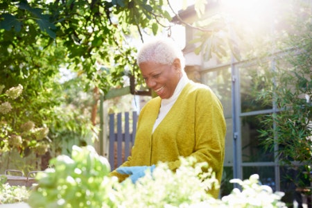 Homeware and Garden Equipment Can Help Them Rejuvenate Their Space