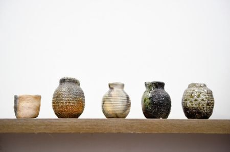 Decorative Vases Look Amazing With or Without Blooms