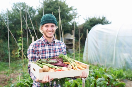 Factor in the Latest Time of Application Before Harvest if Growing Fruit and Veg