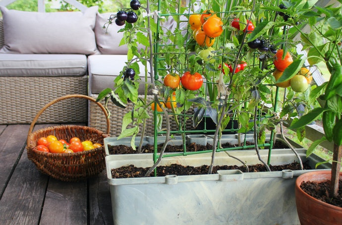 If You're Short on Space, Look for a Gardening Book for Small Gardens or Growing in Pots