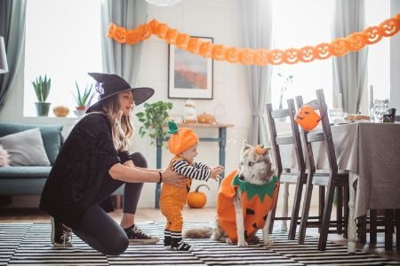 Look for Decorations That Fit Your Space