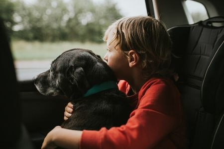 Tend to Travel With Your Pet? Be Aware of the Dangers of Essential Oils