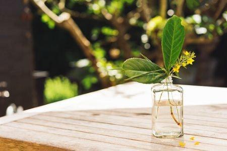 Miniature Bud Vases Showcase Smaller Flowers