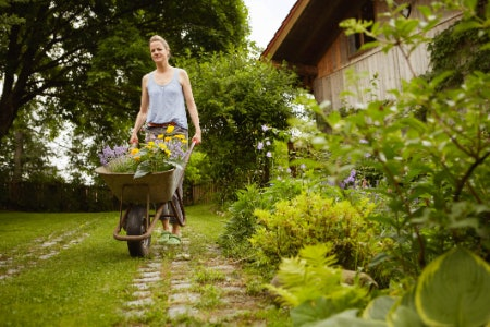 Wheelbarrows Are More Nimble and Can Be One or Two-Wheeled