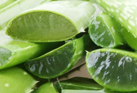 Aloe Vera Helps Soothe Skin Irritation