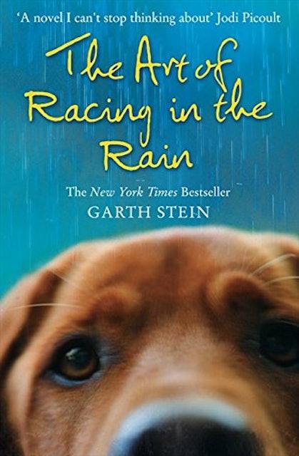 Garth Stein The Art of Racing in the Rain 1
