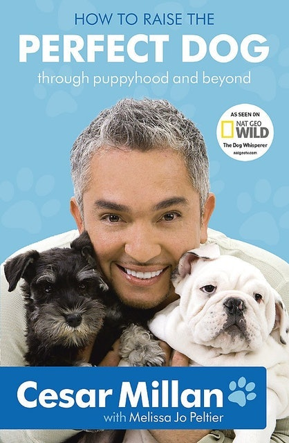 Cesar Millan How to Raise the Perfect Dog 1