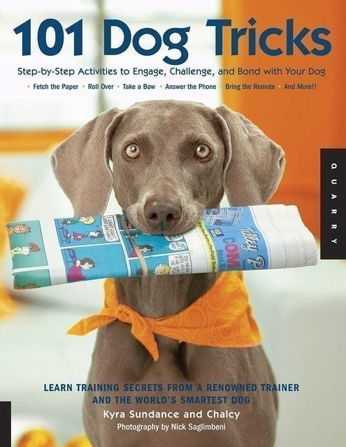 Kyra Sundance 101 Dog Tricks 1