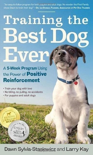 Dawn Sylvia-Stasiewicz Training the Best Dog Ever 1