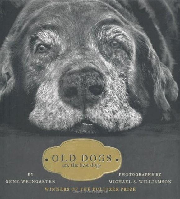 Gene Weingarten & Michael S. Williamson Old Dogs Are the Best Dogs 1