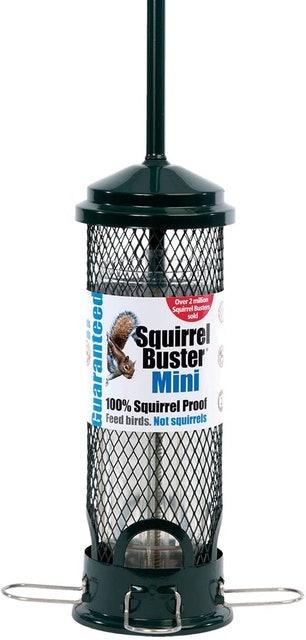 Jacobi Jayne Squirrel Buster Squirrel Proof Bird Feeder Mini 1