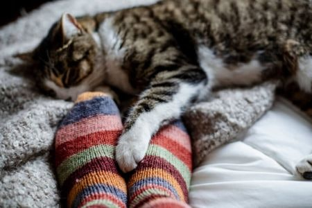 Wool Socks Are Breathable and Work Well All Year Round