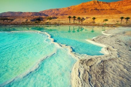 Dead Sea Salts Have the Highest Mineral Content and Can Treat Skin Conditions