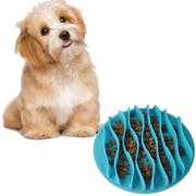 Top 10 Best Slow Feed Dog Bowls in the UK 2021 (Company of Animals, Dogit and More)