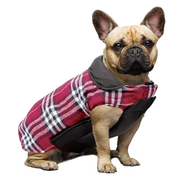 Top 10 Best Dog Coats in the UK 2021